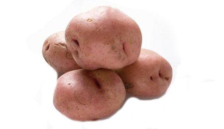 Kartoffeln Balcon Europa Agricultura Ecologica