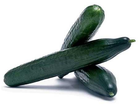 Cucumbers - Balcon Europa - Agricultura ecologica